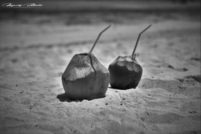 Zanzibar-Masajowie-Masajki-Ocean-Owoce-warzywa-plaża-ludzie-Małpka-Fot.Macie-38