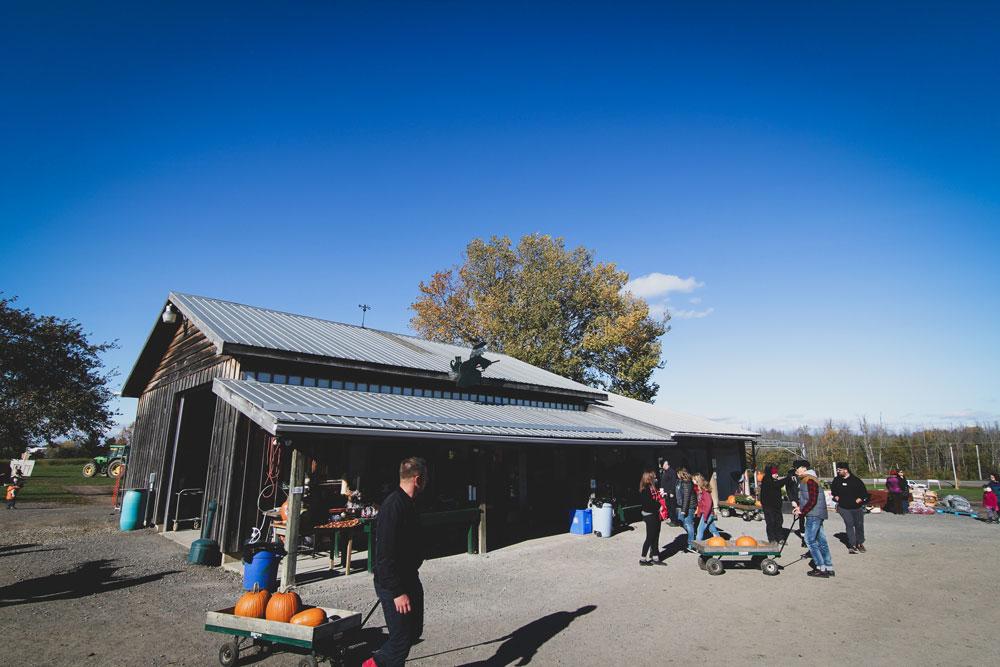 Millers, Farm, Barn