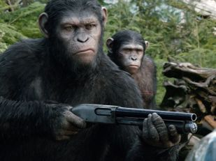 """Caesar (Andy Serkis) is not fond of guns in 'Dawn of the Planet of the Apes.' He's trying to be a leader. """"Caesar's ethos is that apes do not like guns,"""" says Serkis. """"He's trying to find a peaceful accord with the humans who show up. He's an empathetic character."""""""
