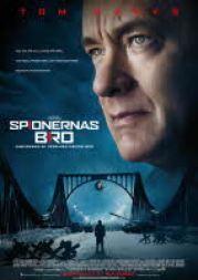 Spionernas_bro