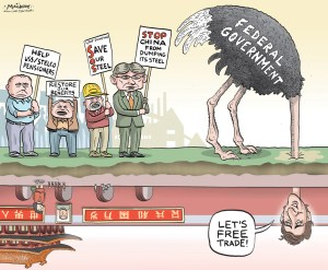 "By Graeme MacKay, The Hamilton Spectator - Wednesday August 24, 2016 Locals outraged at OttawaÕs Òdeafening silenceÓ on steel industry Union leaders, Opposition MPs and even the Chamber of Commerce are pressing the federal government to help Canada's struggling steel industry. Two Hamilton Members of Parliament, three chambers of commerce and union leaders at the local and provincial levels separately have called for help for the industry and especially for retirees and workers in Hamilton. NDP MPs Scott Duvall (Hamilton Mountain)Êand Dave Christopherson (Hamilton Centre) have written to Economic Development Minister Navdeep Bains, saying the federal government has stayed on the sidelines too long. ""To date, your government has not been tangibly involved in any way to help protect the jobs, benefits and pensions of current and former employees of USSC/Stelco despite commitments previously made by colleagues and the Prime Minister"" they wrote. ""Workers, pensioners, the business community and the City of Hamilton have all appealed for your help. So far, you and your government have been missing in action.Ó As a start, they want the government to release the ""secret deal"" that ended a lawsuit against U.S. Steel for breaking the production and employment promises it made to get government approval for the acquisition. They also back a call by the United Steelworkers union for a public inquiryÊinto Canadian bankruptcy law they say favours creditors at the expense of workers and retirees, and the 2007 takeover of Stelco by U.S. Steel. Duvall has raised the issue in ParliamentÊseveral times. U.S. Steel Canada, the former Stelco, has been under creditor protection since Sept. 16, 2014. It is seeking a buyer for the mills in Hamilton and Nanticoke. On the business front, chambers of commerce in Hamilton, Windsor and Sault Ste. Marie are taking a joint resolution to the Canadian chamber's national convention calling for a policy to protect the industry from unfair fo"