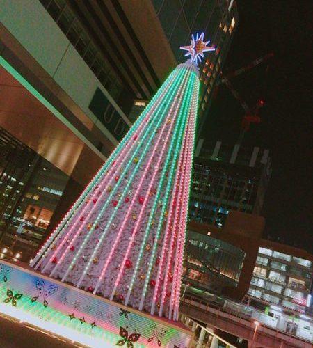 お歳暮、おせち、クリスマス特集,楽天