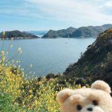和歌山、白崎への海岸線の道を走る、2019年4月~灯台めぐり~岬めぐり~