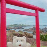いいアングル見つけ!鳥居から野島崎灯台が見えるよ 千葉最南端