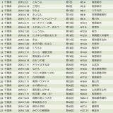 千葉の道の駅めぐり、2日間の記録、27個でコンプリートのはずが、、
