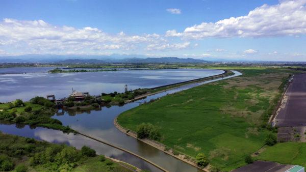 ハート型の池 渡良瀬遊水地 意外と巨大だった 群馬県、栃木県、埼玉県の県境