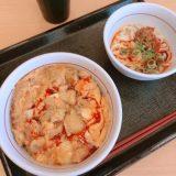 【なか卯】親子丼と冷やし麻辣坦々うどん