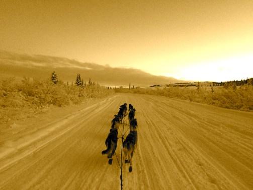 Training on the Denali Highway.