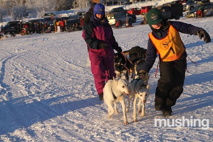 Iz getting ready to race- photo credit Mushing Magazine