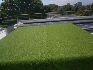 Aboitiz Sarnafil installation with solar