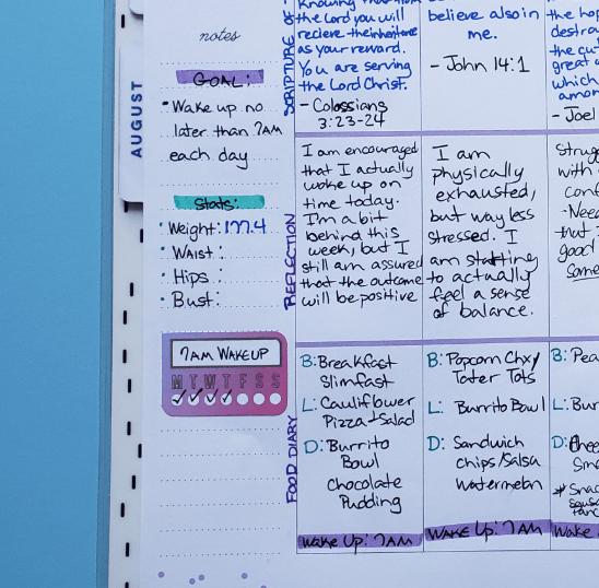 wellness planning sheet