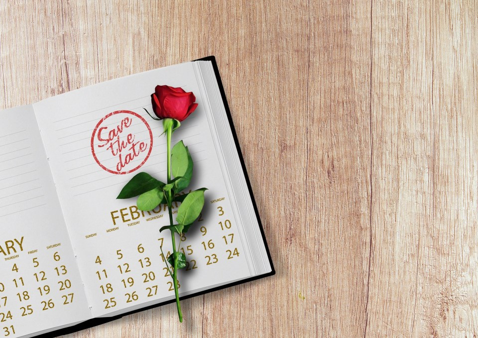 save the date calendar with rose