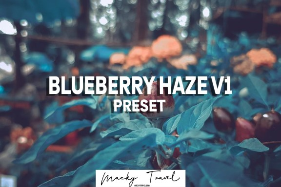 BLUEBERRY HAZE LIGHTROOM MOBILE DNG XMP