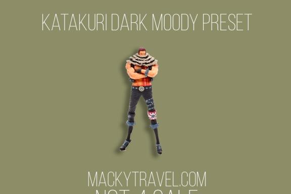 Katakuri Dark Moody Lightroom Mobile Preset