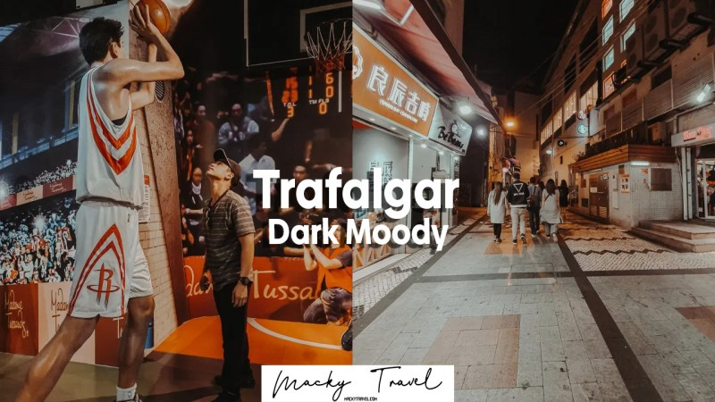 Trafalgar dark moody lightroom preset