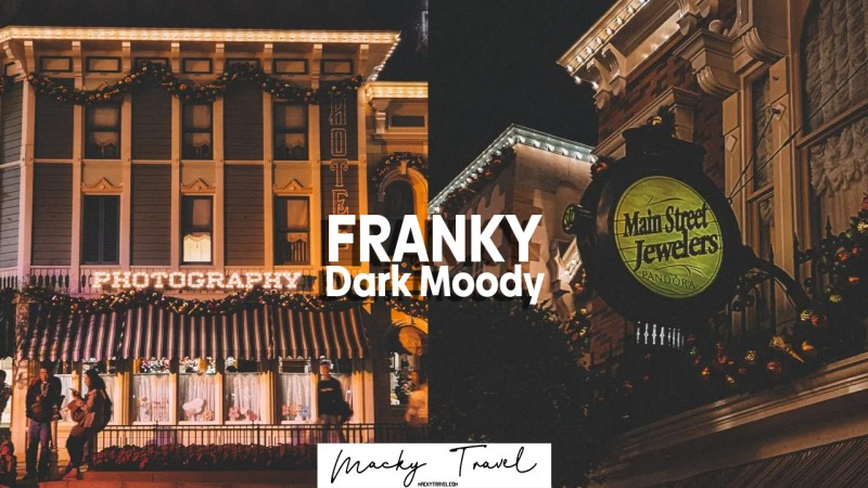 franky dark moody lightroom preset