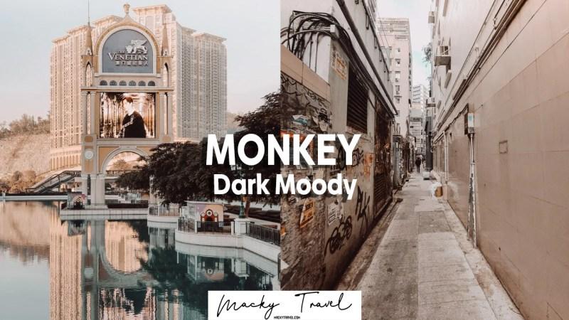 monkey dark moody lightroom preset