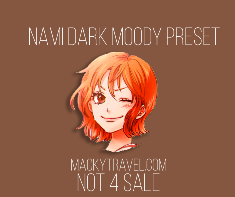 Nami Dark Moody Lightroom Mobile Preset