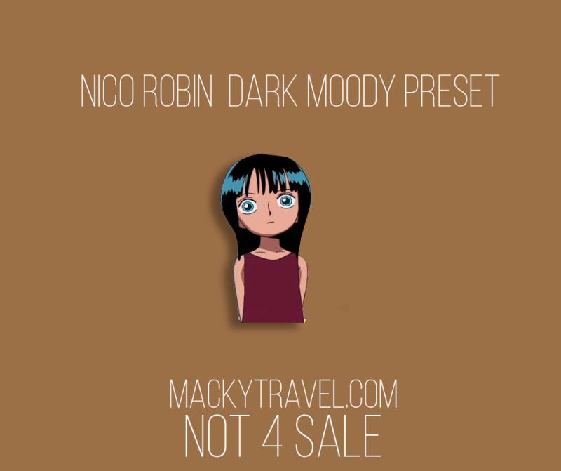robin dark moody lightroom preset
