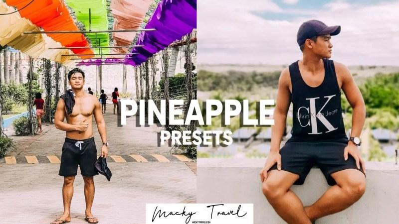 pineapple lightroom presets