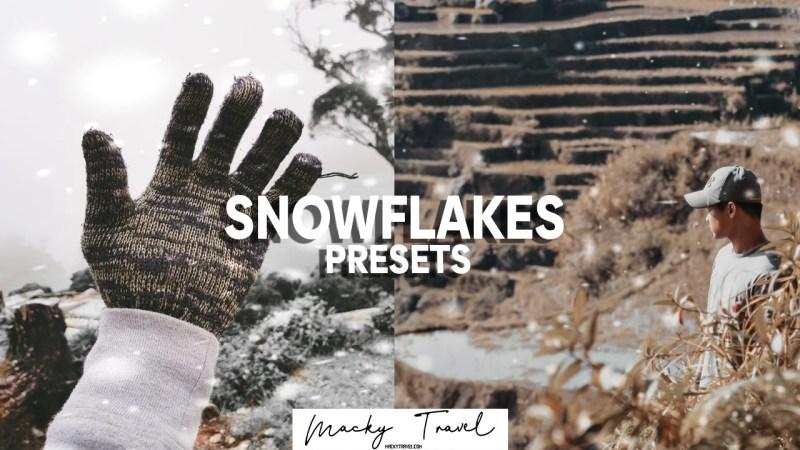snowlakes lightroom presets