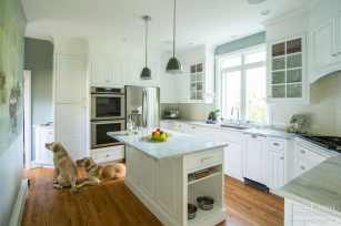 Custom dog bowl niche and drawer for storing treats imbedded into the island