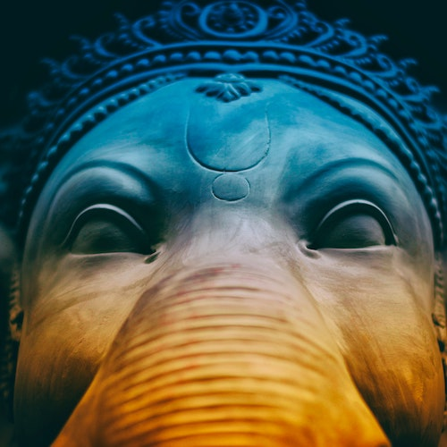 UK needs apathy like elephants need power stations – Political