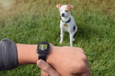 CMRA para Apple Watch