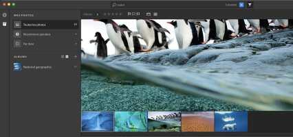 Versão prévia do Project Nimbus, da Adobe