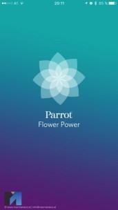 parrot-pot-app4