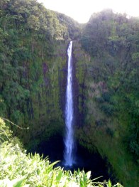 Akaka Falls (2)