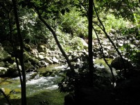 'Īao Stream from Within the Valley