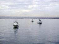 Harbor Police