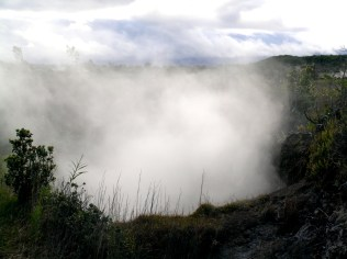 Steam from a Steam Vent on the 'Iliahi Trail (2)