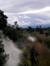 Steam from Steam Vents on the 'Iliahi Trail