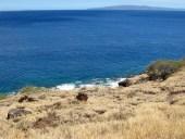 The Maui Coast