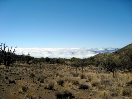 The View from the Mauna Kea Visitor Center