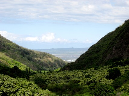 The View to the Front of 'Īao Valley