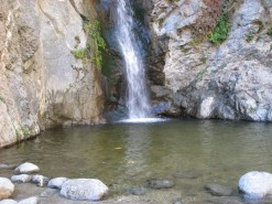 Angeles National Forest, 2010 - 06