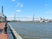 Savannah River 8