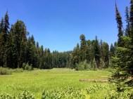 Crescent Meadow 2
