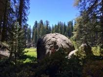 Crescent Meadow Boulder