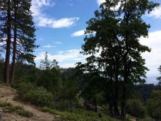 Moro Rock Trail 8