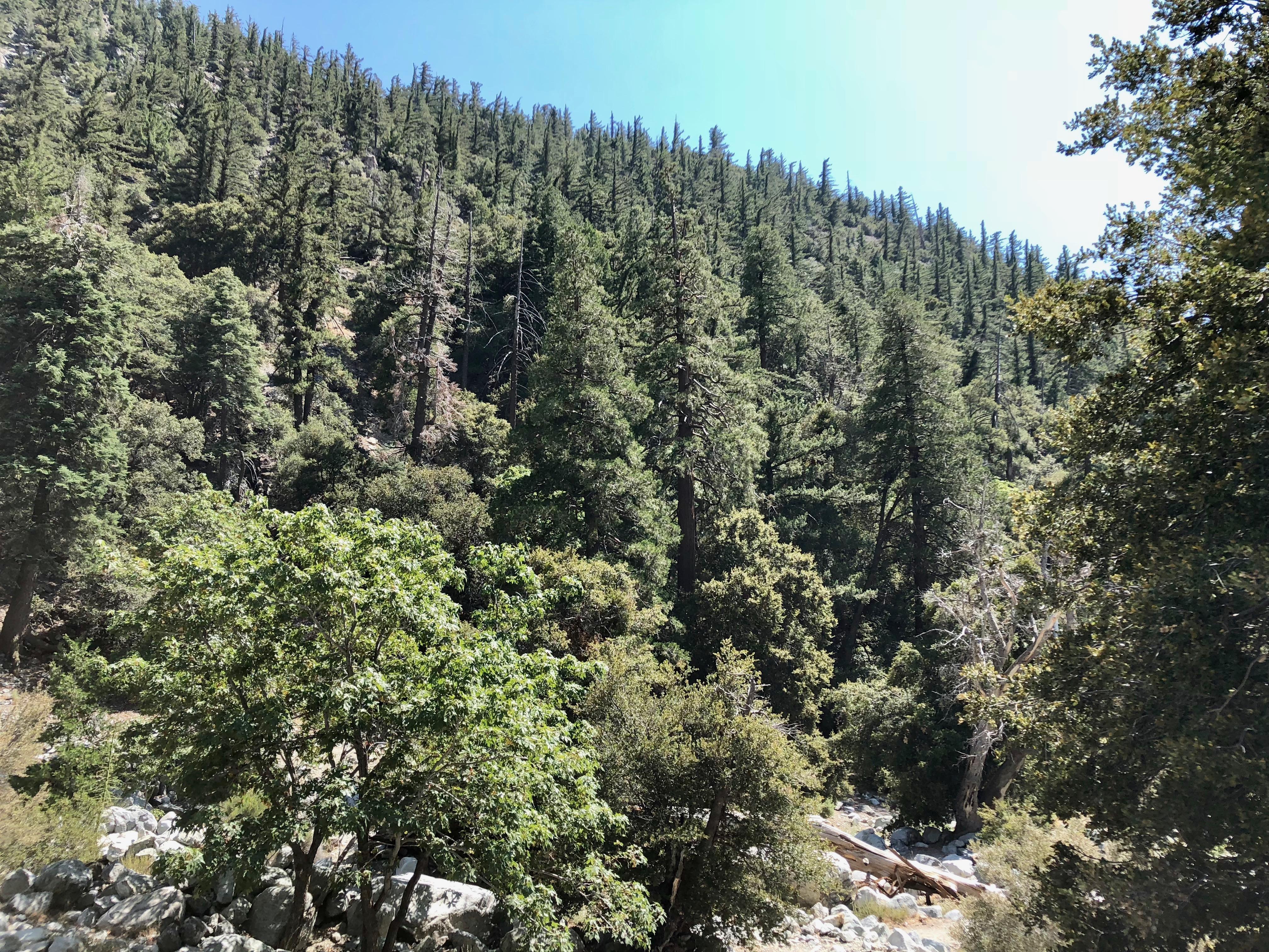 Ice House Canyon Trailhead 4