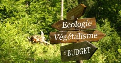 ecologie-budget-vegetalisme ma conscience écolo