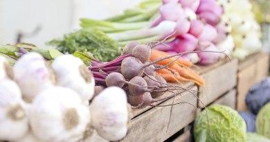 cuisine-vegetale-mes indispensable ma conscience écolo
