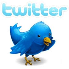 twitter bird logo for twitter advertising services