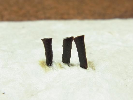 複数の紐の焼き留めの準備