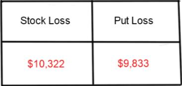 Stock Loss and Put Loss A