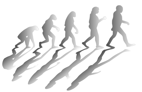 Why Our Evolutionary Biology Works Against Us In Markets